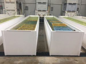 Viking Plastics aquaculture tanks
